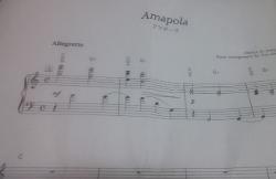 Amapola5