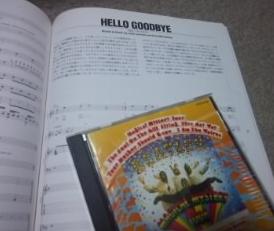 Hellogoodbye_2