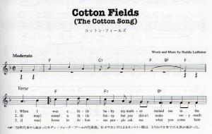 Cottonfields